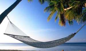 Top-5 Hammocks For 2021